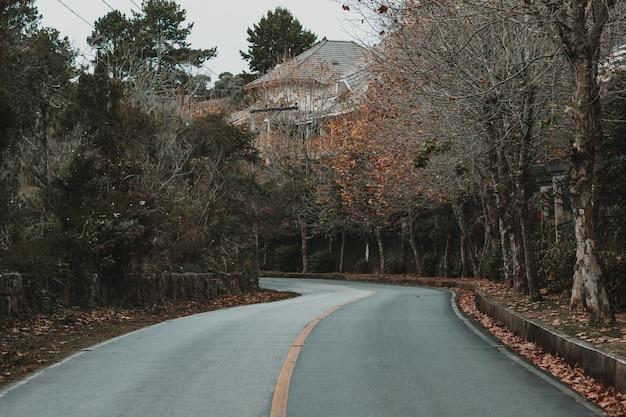 Route goudronnée à travers un village