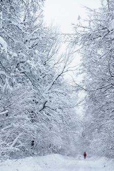 Route d'hiver après les chutes de neige