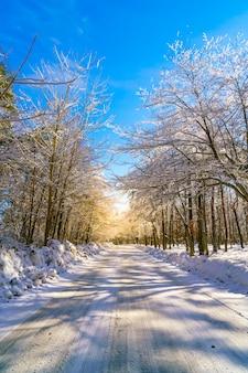 Route en hiver, au japon