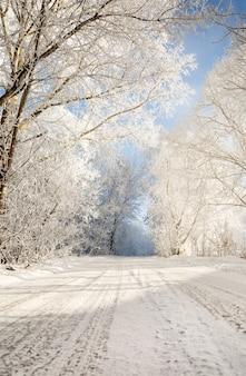 Route d'hiver dans un paysage de forêt givrée enneigée