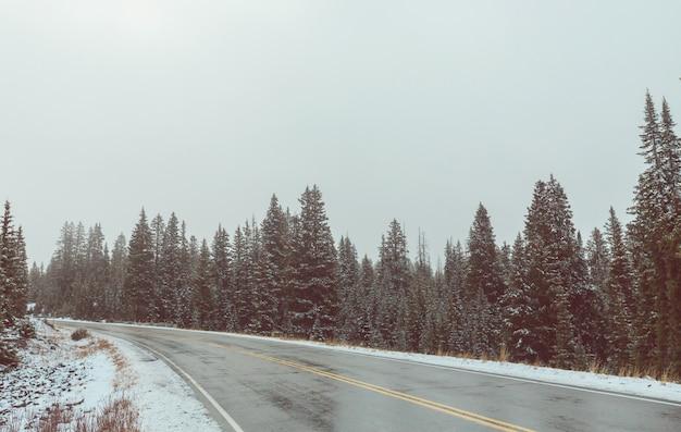 Route d'hiver dans la ville