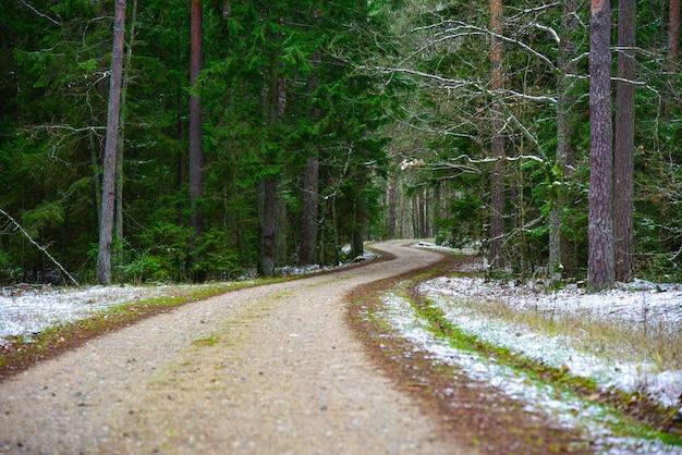 Route incurvée dans la forêt d'hiver