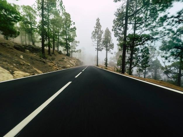 Route longue à la montagne avec forêt de pins et nuages de brouillard à l'avant et ciel clair gris - point de vue au sol avec asphalte noir et lignes blanches - concept de conduite et de voyage