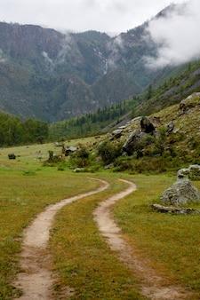 La route mène à des falaises recouvertes d'herbe et enveloppées de brouillard matinal