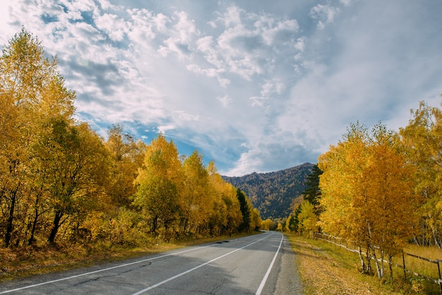Route de montagne asphaltée parmi les bouleaux d'automne jaunes et les hautes roches sous un beau ciel nuageux