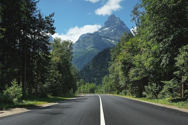 Route de montagne à travers la forêt