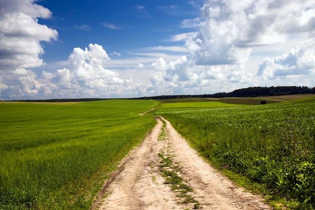 Route rurale de campagne non asphaltée située