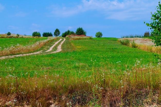 Route rurale dans le paysage letton.