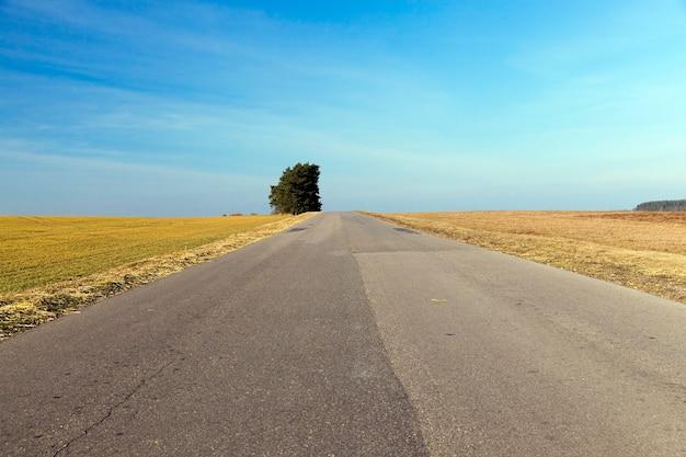 Route rurale recouverte de couches d'asphalte différentes en été.