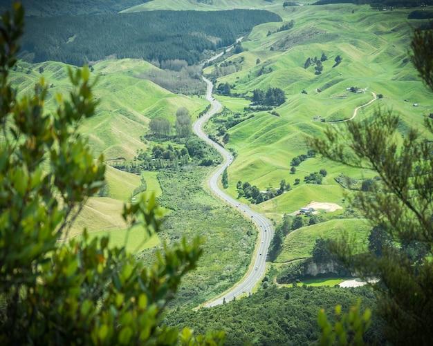 Route sinueuse menant à travers de vertes collines encadrées de feuillage