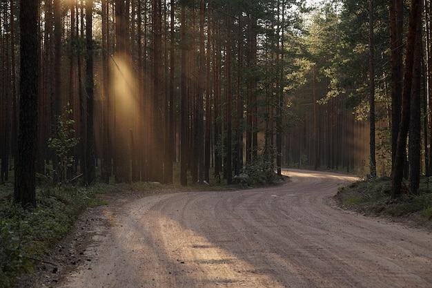 Une route sinueuse avec des rayons lumineux du soleil couchant.