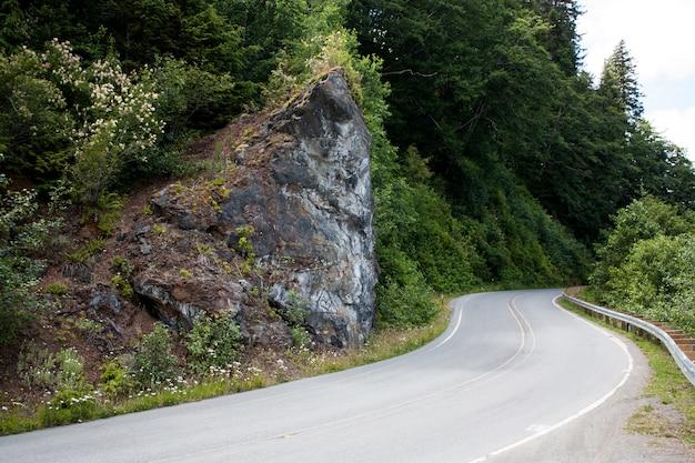 Route sinueuse se penchant autour d'un coin rocheux avec des arbres
