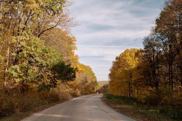 Route à travers la forêt d'automne