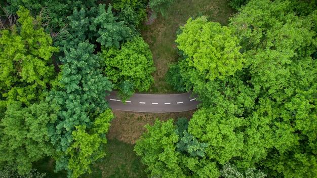 Route à travers la forêt verte d'été, vue aérienne