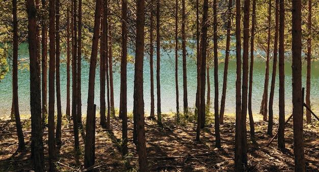 Route à travers les gorges de la rivière moros, un lac aux eaux turquoises au sommet de la montagne. dans le parc national de la sierra de guadarrama, el espinar, castilla y leon.