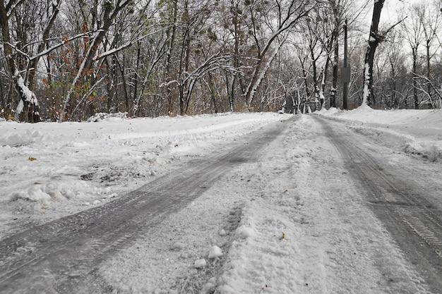 Route à travers le parc le jour d'hiver