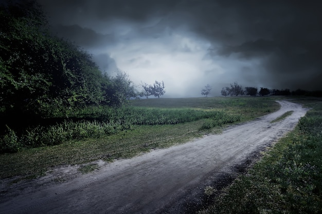 Route à travers le pré près de quelques arbres et brumeux