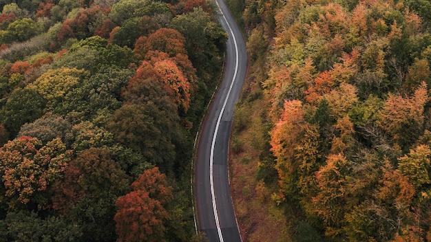 Route à travers une route panoramique d'automne