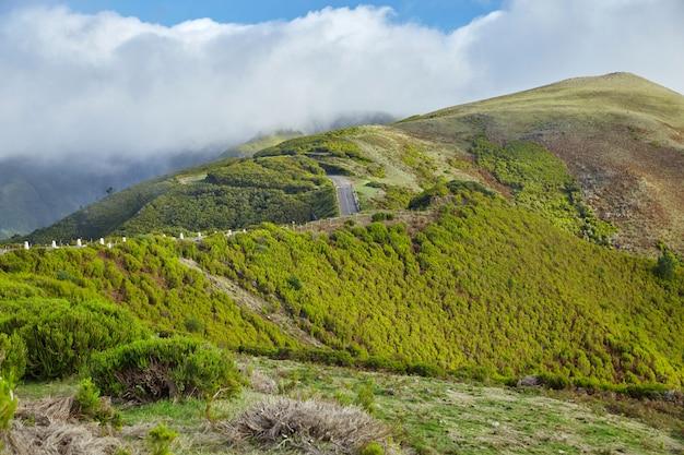 Route traversant la pittoresque madère, portugal