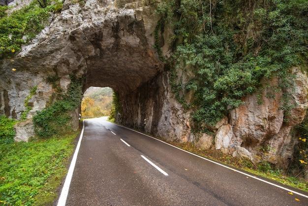 Route de tunnel de pierre dans un paysage de montagne dans le parc naturel de somiedo, dans les asturies, en espagne.