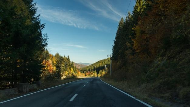 Une route vers la nature