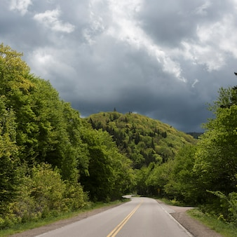 Route vide au milieu des arbres dans la forêt, cabot trail, parc national des hautes-terres-du-cap-breton, île du cap-breton