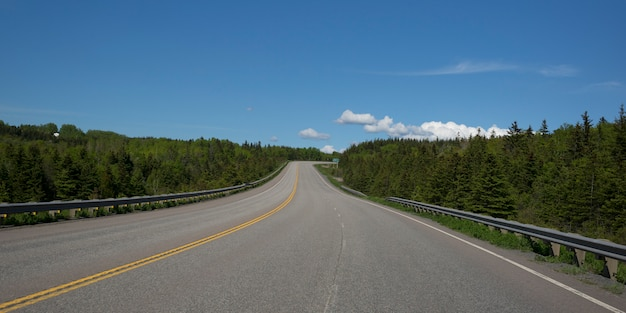 Route vide au milieu des arbres dans la forêt, frankville, l'île du cap-breton, nouvelle-écosse, canada