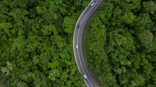 Route vue aérienne traversant la forêt