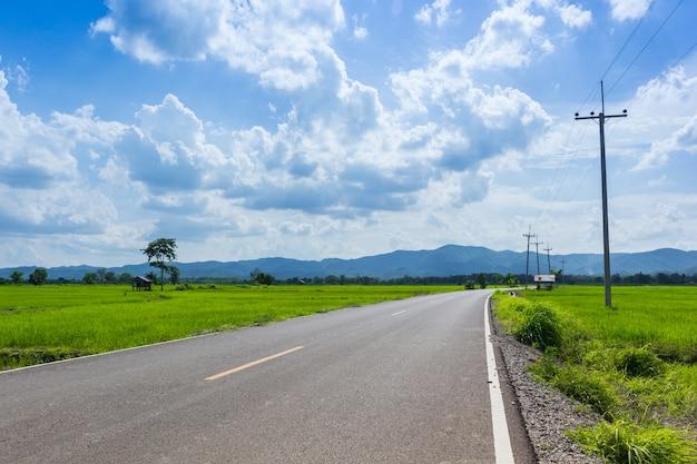 Routes de campagne avec champ de maïs par une journée ensoleillée