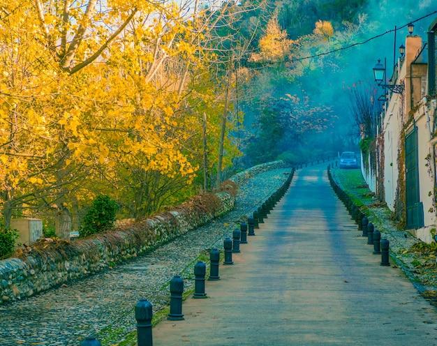 Rue colorée à l'alhambra avec du brouillard.