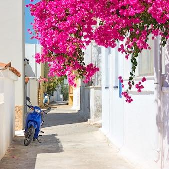 Rue grecque confortable, village perdika, île d'egine, grèce