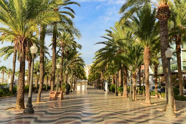 Rue piétonne avec des palmiers explanada de espana à alicante.