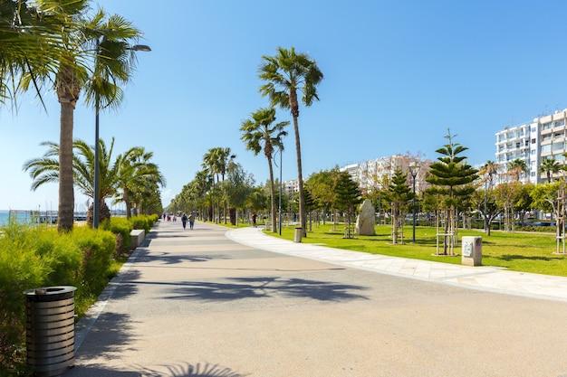 Rue vide dans le grand jardin agréable et confortable sous un beau ciel bleu
