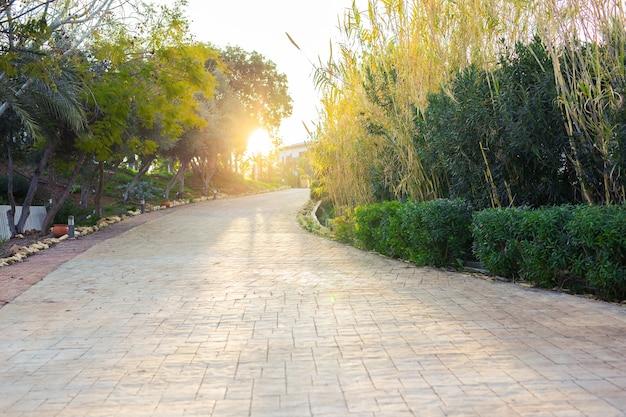 Rue vide dans le grand jardin agréable et confortable.
