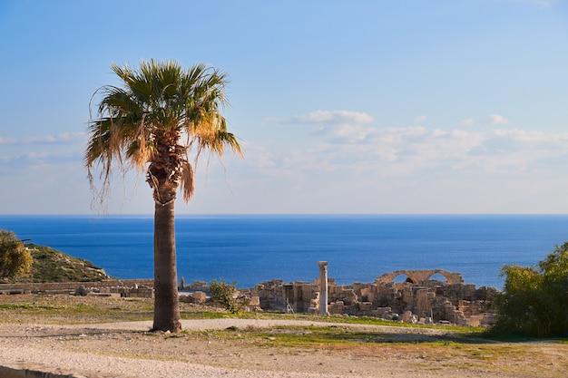 Ruines archéologiques de kourion à chypre