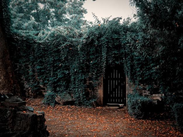 Ruines d'un mur défensif d'un château médiéval en basse silésie, pologne