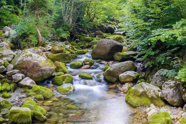 Ruisseau dans les alpes liguriennes