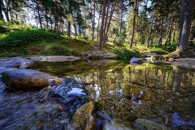 Ruisseau avec eau transparente et reflets des arbres de la forêt. navacerrada.