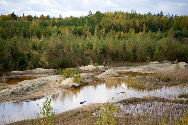 Ruisseau de forêt d'automne avec des pierres côtières