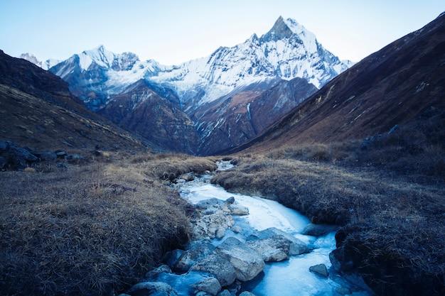 Ruisseau avec la glace coulant des montagnes, ombre bleue de la lumière du matin