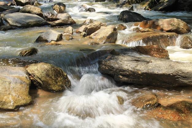 Ruisseau avec pierre