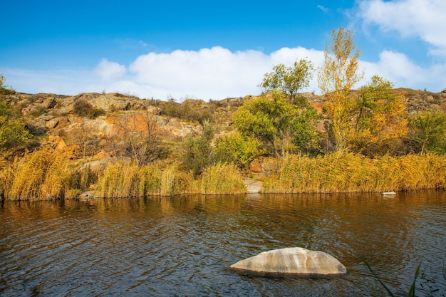 Un ruisseau propre et rapide coule parmi des pierres humides et lisses entourées de grands morceaux secs