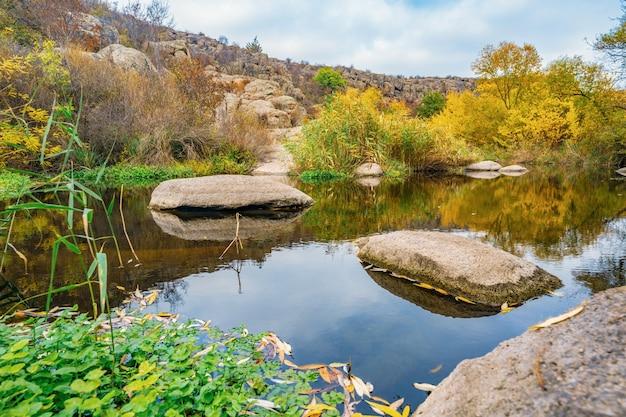 Un ruisseau rapide, peu profond et propre coule parmi de grosses pierres lisses et humides entourées de grands morceaux secs qui se balancent au vent dans la pittoresque ukraine