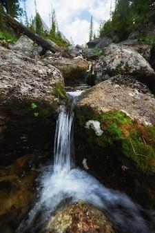 Des ruisseaux de montagne fabuleux, une végétation luxuriante et des fleurs autour. eau de source dégelée des montagnes. vues magiques sur les hautes montagnes, les alpages
