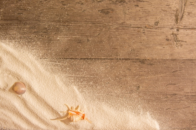 Sable blanc et coquillages sur planches de bois.