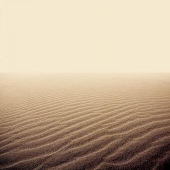 Le sable sur le désert sec.