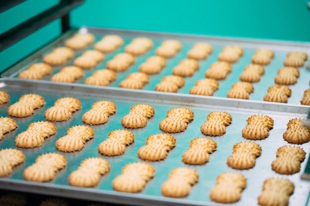 Sables. production de biscuits sablés dans une usine de confiserie. biscuits sablés sur une grille métallique après la cuisson au four.