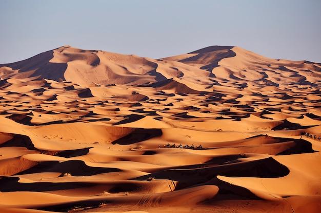 Sables sans fin du désert du sahara