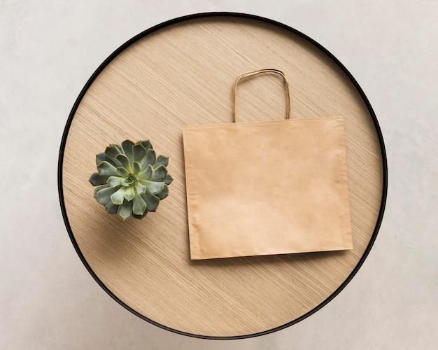 Sac en papier vue de dessus avec plante d'intérieur