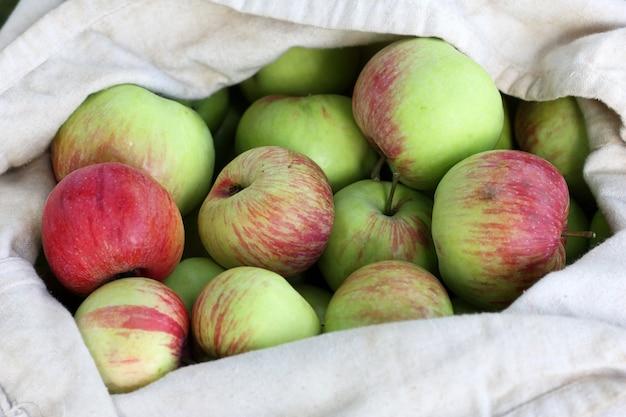Sac de pommes rouge-vert en été